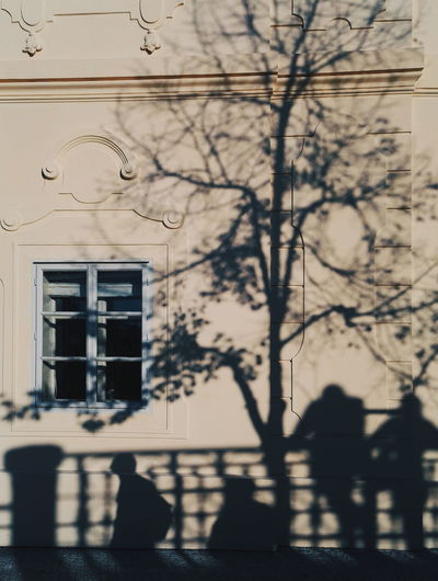Prague Prague Czech Republic Ligth And Shadow Light Street Street Photography Morning Shadow Window Architecture Building Exterior Built Structure Close-up