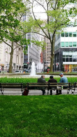 Fountain Park Tree City Grass Green Color Building Exterior Friendsforlife New York City NYC Outdoors Friends Live For The Story The Still Life Photographer - 2018 EyeEm Awards