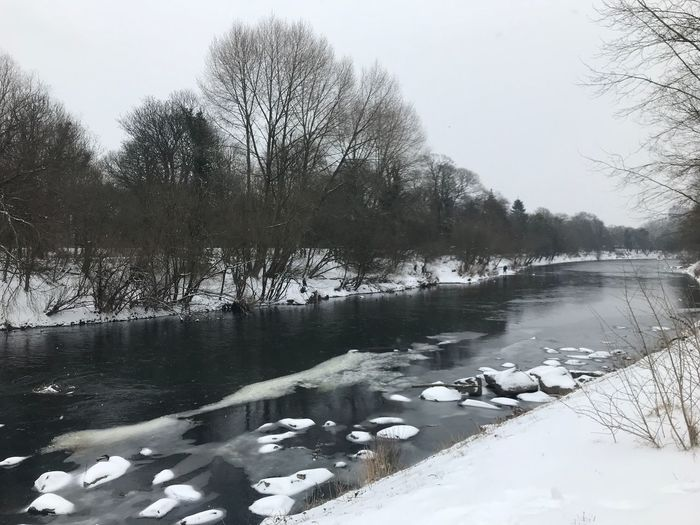 Frozen River Water Bare Tree Nature Lake Tree Winter Tranquility Beauty In Nature Cold Temperature No People Scenics Floating On Water