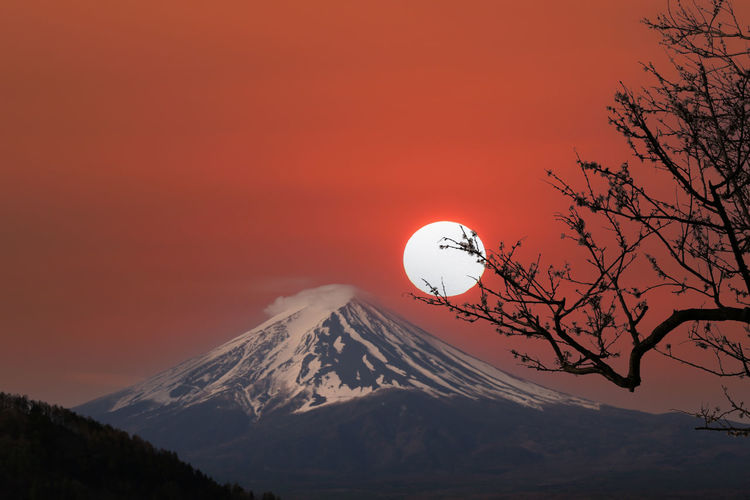 Mount fuji and sakura tree in blooming,scenery of mount fuji in the evening sky at sunset.