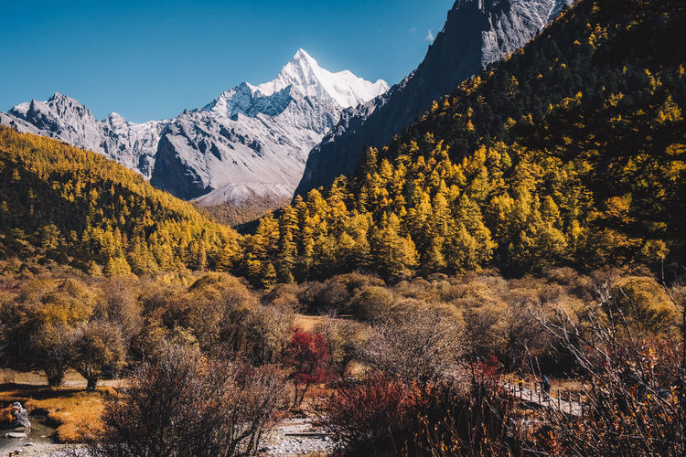 yadling mountayadling mountain chinain china Alaska,background,beauty,blue,countryside,denali,environment,europe,flower,forest,grass,green,hill,horizon,lake,landscape,landscapes,meadow,mountain,mountains,nature,outdoor,panoramic,park,path,peak,road,scenic,season,sky,snow,spring,summer,tourism,trail, Beauty In Nature Scenics - Nature Nature Outdoors