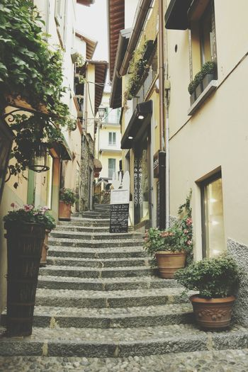 Bellagio, Italia Eye4photography  Check This Out Getting Inspired Travel Traveling Travel Photography Italia Italy Lago Di Como Como Como Lake Lake Como
