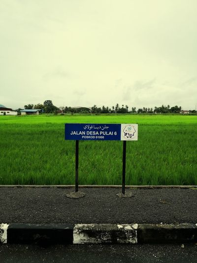 Arau, Perlis 🇲🇾 Ricefield Ricefields Harvest #ricefields Communication Text Western Script Sky Grass Green Color Parking Sign Signboard
