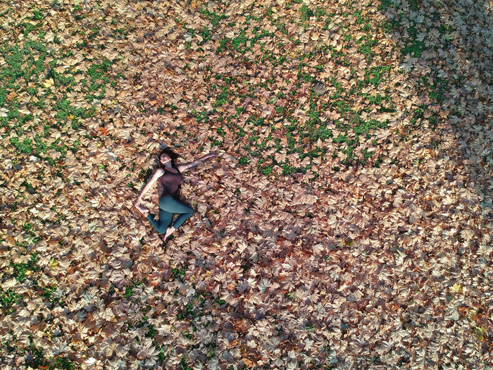 Directly above shot of woman lying on autumn leaves