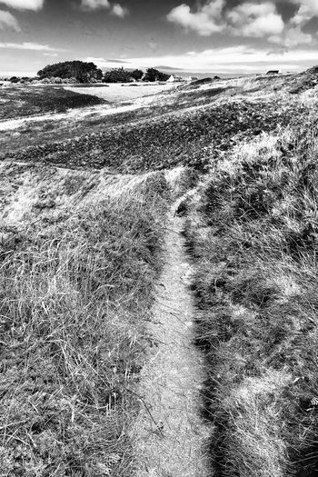 Chemin côtier