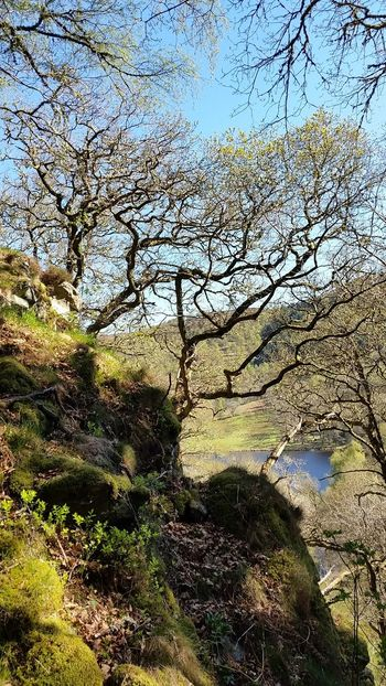 Pitlochry Loch Tummel Scottish Highlands Landscape_Collection Eye4photography  Water_collection EyeEm Best Shots Springtime Framing The View Exceptional Photographs EyeEm Nature Lover Beauty In Nature The Great Outdoors - 2017 EyeEm Awards EyeEm Masterclass Blue And Green Moss Covered Rocks Trees On Rock Scotland 💕 Travel Destinations Loch  Loch  Mobilephotography Travel Photography The Week Of Eyeem