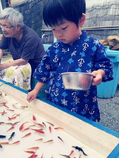 Goldfish scooping❤️ Goldfish Goldfish Scooping Followme Summer ☀ Festival Jinbei 甚平 Temple Boy Japanese Temple