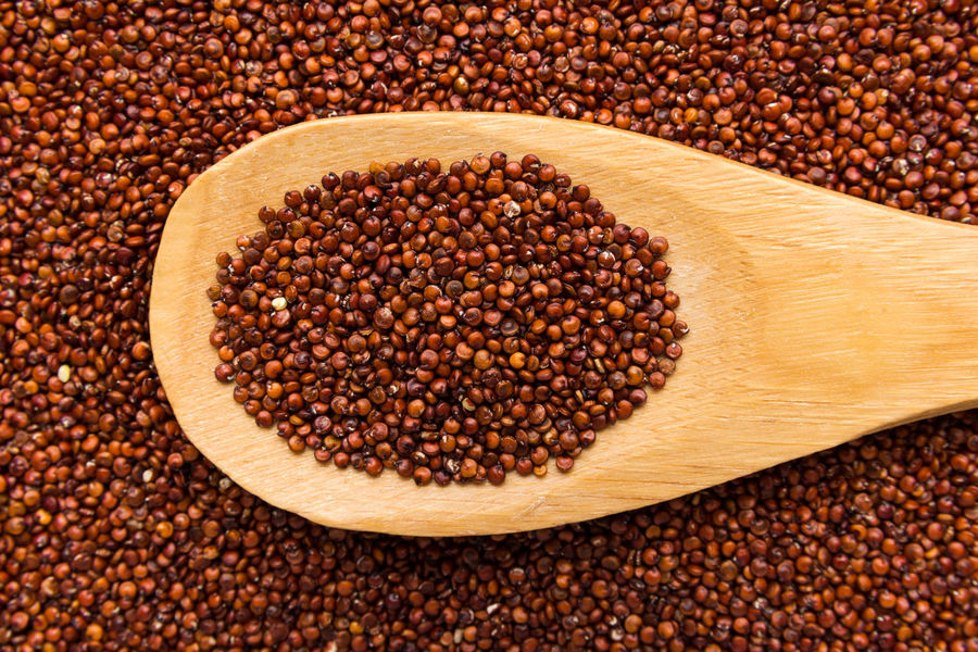 Quinoa Backgrounds Bean Brown Cereal Plant Close-up Dried Food Food Food And Drink Freshness Healthy Eating Ingredient Legume Family No People Raw Food Red Seed Textured