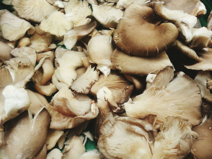 And the rest :) Full Frame Abundance Large Group Of Objects High Angle View Food And Drink Food Close-up Backgrounds Healthy Eating No People Freshness Indoors  Day Mushrooms Mushroom Mushroom_pictures Toad Toads Champignons Champignon Champiñones Setas