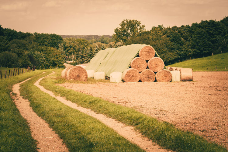 Agriculture Bale  Beauty In Nature Day Field Grass Hay Bale Landscape Nature No People Outdoors Rolled Up Rural Scene Scenics Sky Tranquil Scene Tranquility Tree