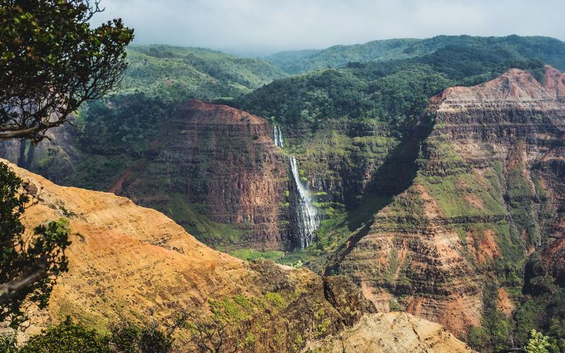 Waterfall Waimea Canyon Kaui Hawaii Canyon Tranquility Beauty In Nature Scenics - Nature Tranquil Scene Plant Tree Nature Mountain Land Sky Non-urban Scene Landscape No People Day High Angle View Outdoors Environment