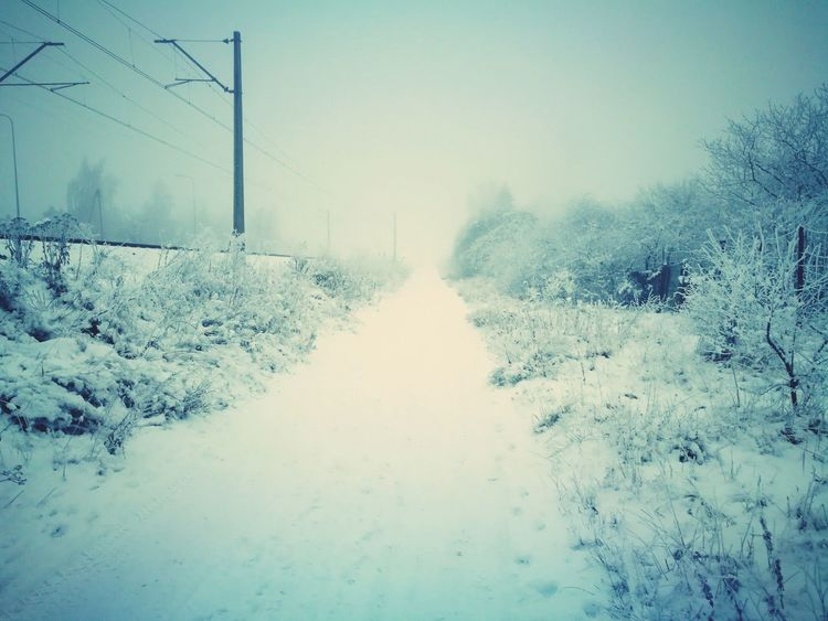 First Eyeem Photo Day Nature No People Outdoors Sky The Way Forward Tree Road Cloud - Sky Snow