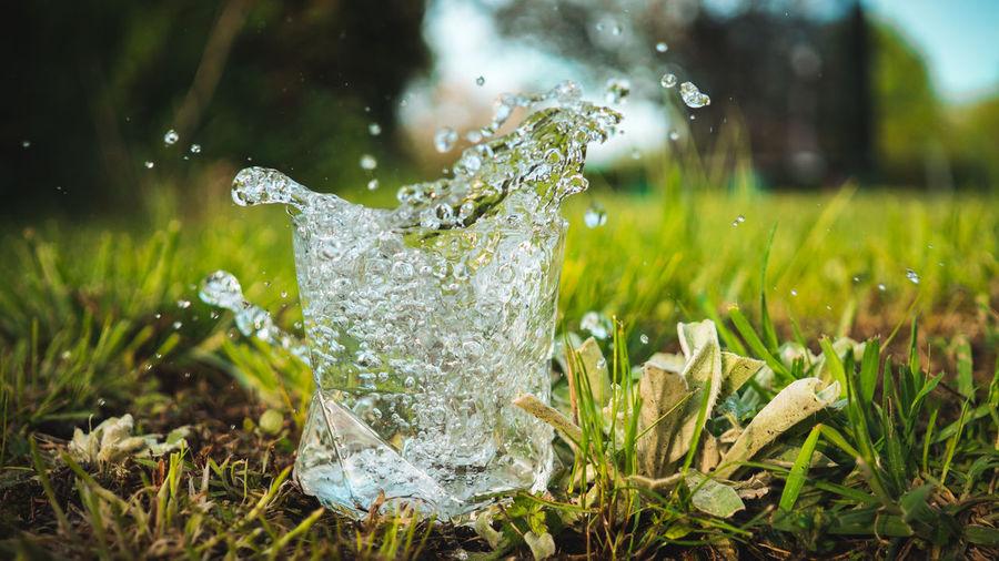 Close-Up Of Water Splashing On Grassy Field