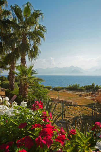 Antalya Holiday