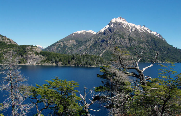 Andes Lake Region Nahuel Huapi National Park Nature Parc National Des Pyrenees Argentina Bariloche Beauty In Nature Blue Clear Sky Day Lake Mountain Mountain Range Nature No People Outdoors Patagonia Plant Scenics Sky Tranquil Scene Tranquility Tree Water Shades Of Winter An Eye For Travel
