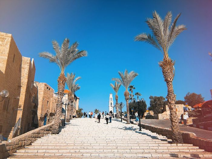 Jaffa Steps Sunshine Sky Old Town Palms Israel Tel Aviv Jaffa City Sky Staircase Capture Tomorrow