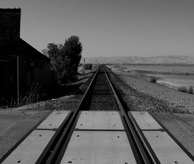 Railway Railroad Train Tracks Railroad Tracks Monochrome Blackandwhite