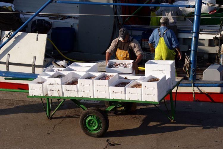 Fishermen unloading fish from trawler