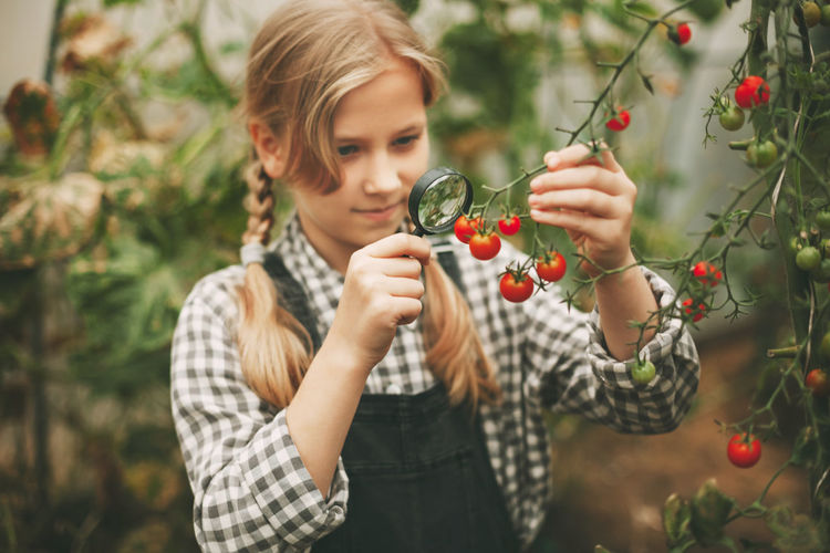 A beautiful little girl examines small cherry tomatoes through a magnifying glass.