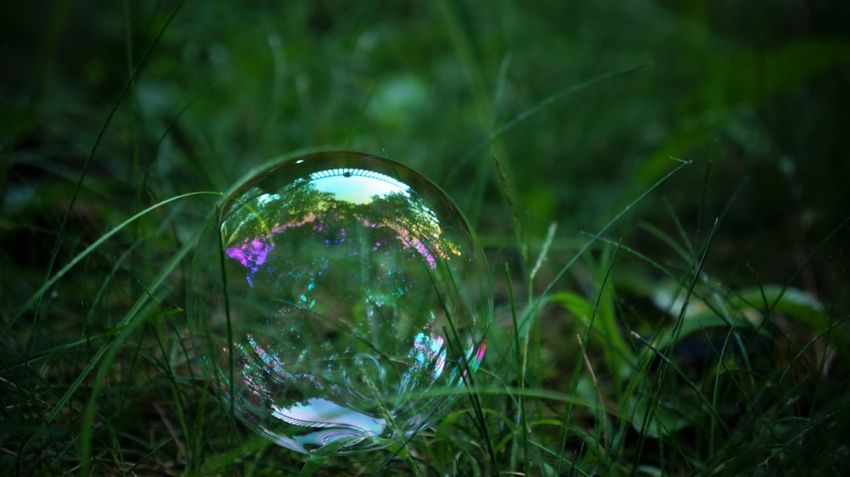 Bubble Day Fragile Fragility Grass Green Color Nature No People Outdoors Round Sphere
