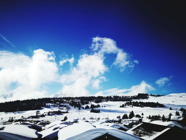 Snow Winter Cold Temperature Landscape Beauty In Nature Mountain Blue Sky Day