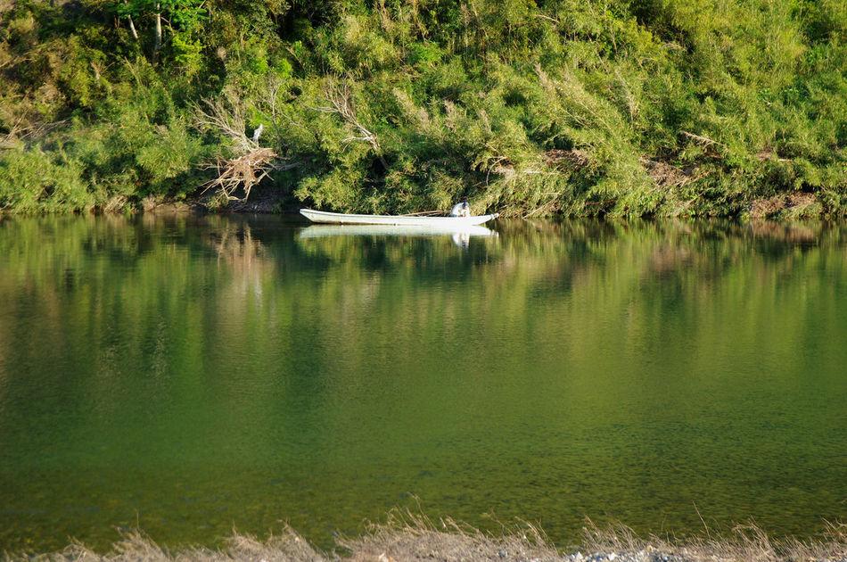 古座川の漁師さん River View Fisher Man EyeEm Nature Lover Fishing Time