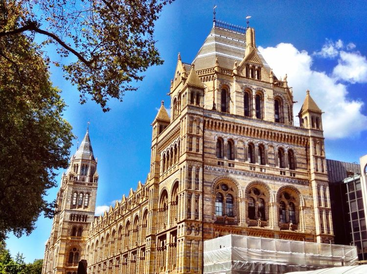Colour Of Life London History Edit 🌞Beautiful colours of London architecture🌞