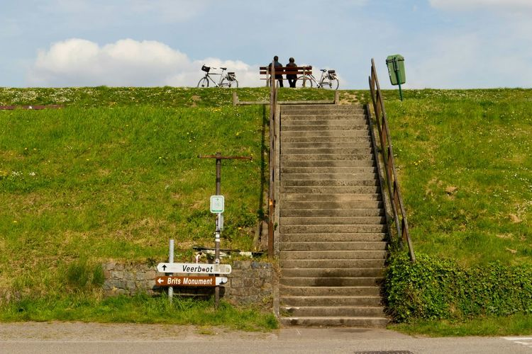 Narrow Stairs Along Grassland