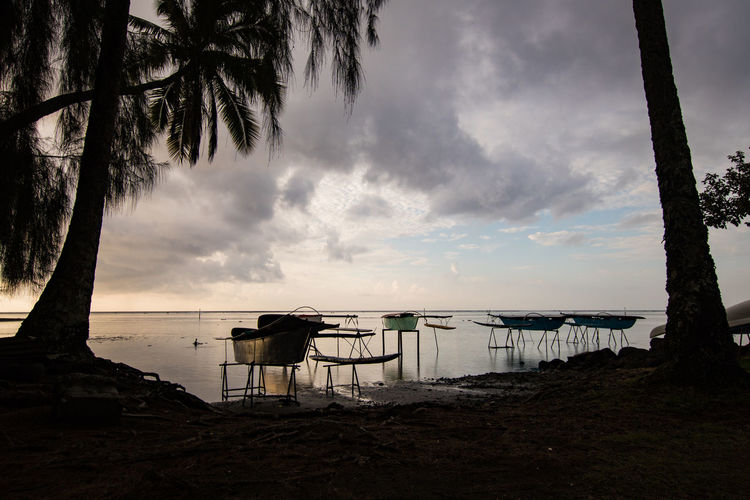 boats at venus point in the evening in tahiti French Polynesia Palm Tree Travel Beach Beauty In Nature Boat Built Structure Cloud - Sky Land Nature No People Outdoors Pacific Ocean Plant Scenics - Nature Sea Seascape Silhouette Sky Tranquil Scene Tranquility Tree Water The Great Outdoors - 2018 EyeEm Awards The Traveler - 2018 EyeEm Awards