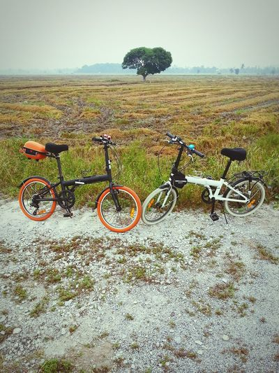 Bicycles parked on field against sky