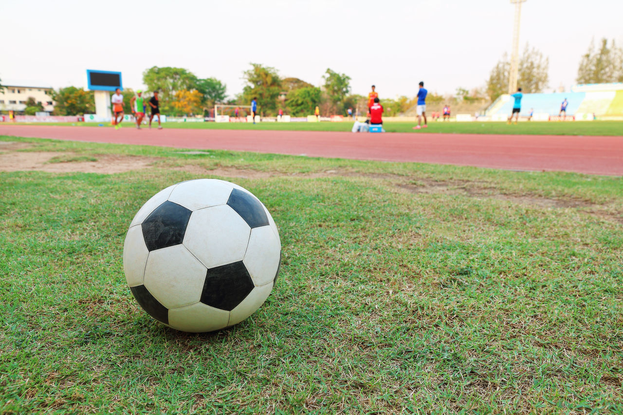 sport, soccer, sports equipment, team sport, soccer ball, grass, ball, incidental people, focus on foreground, plant, day, playing field, nature, field, close-up, soccer field, football, outdoors, land