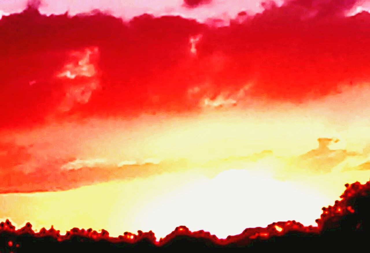 red, silhouette, sunset, heat - temperature, dramatic sky, orange color, nature, burning, sky, scenics, beauty in nature, flame, no people, outdoors, forest fire, night, cloud - sky, tree, yellow, power in nature, mountain, erupting, global warming