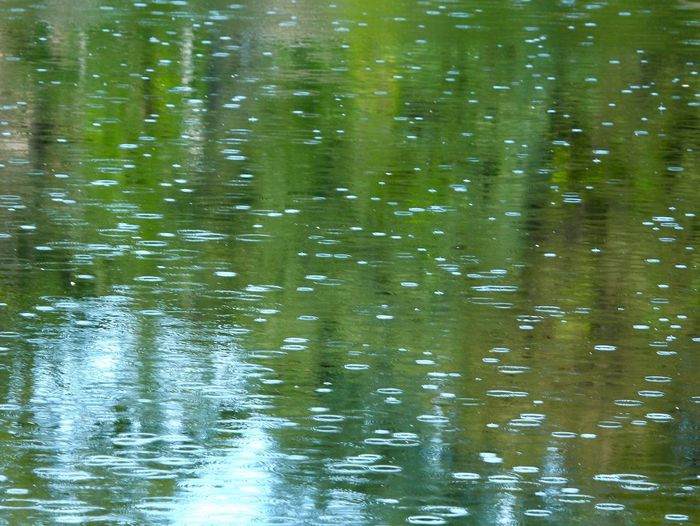 Raindrops Raindrops On Water Raindrops On Lake Backgrounds