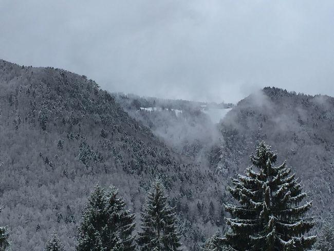 Winter Jura Found On The Roll