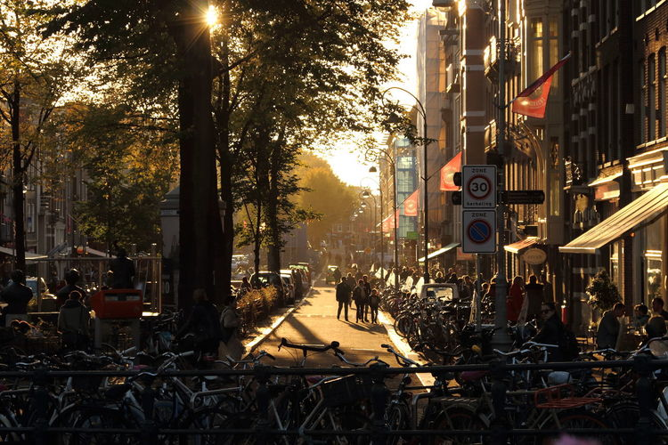 People and bicycles on street in city