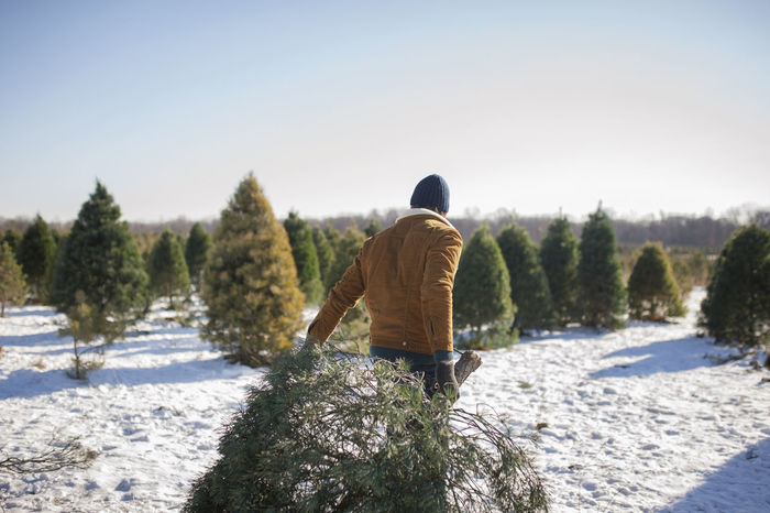 REAR VIEW OF MAN ON SNOW COVERED PLANTS
