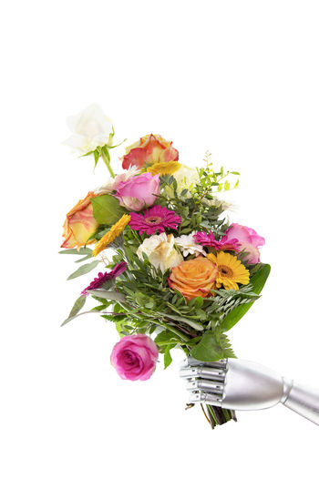 A silver metal robot arm reaches out to a colorful bouquet of flowers. Isolated in front of white background. Conceptual photo on artificial intelligence. Bouquet Copy Space Greeting Life Machine Peace Positive Science Arm Artificial Intelligence Bouquet Bunch Of Flowers Computer Flower Flower Arrangement Friendly Gesture Gift Robot Robot Hand Roses Studio Shot Technology Welcome White Background