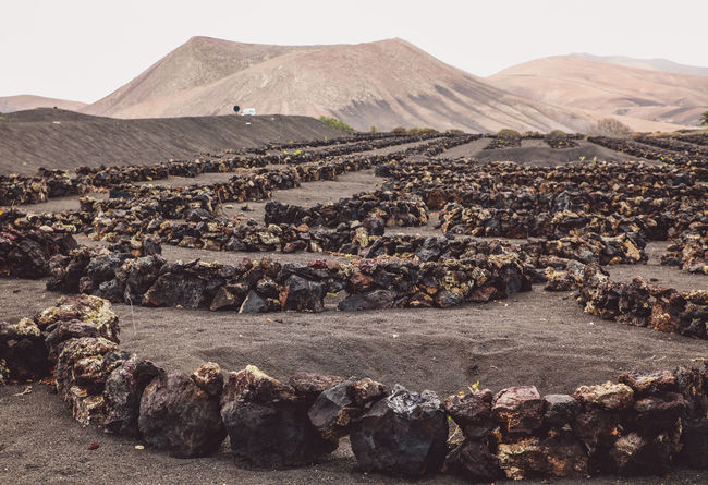 Canary Islands Lanzarote SPAIN Travel Volcanoes Day Geological Formation Island Landscape Mountain Vineyard Volcanic  Volcano Wineyard