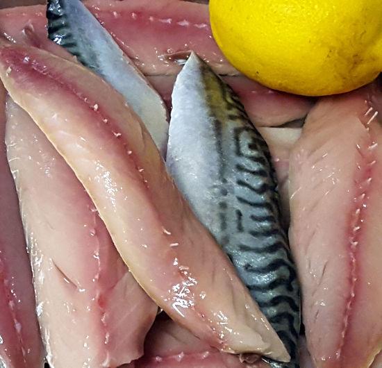 Mackerel Fish Fresh Filets
