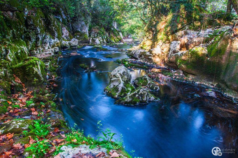 Autumn Fall Long Exposure Taking Photos EyeEm Nature Lover Nature Landscape EyeEm Best Shots Nikon Relaxing