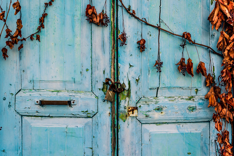 By Anna Wacker Abandoned & Derelict Autumn Fall Colors Abandoned Abandoned Buildings Backgrounds Blue Closed Door Day Decayed Beauty Decline Deterioration Door Entrance Full Frame Latch Lock No People Old Outdoors Rusty Turquoise Colored Weathered Withered Leaves Wood - Material