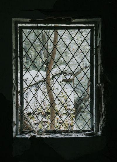 A window in a
