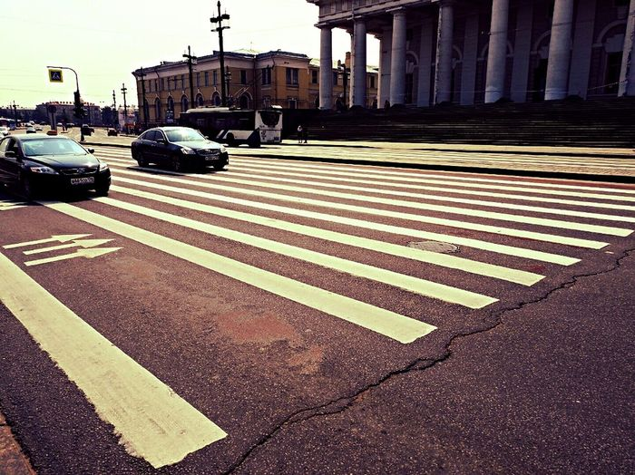 Big City Life Biggest Zebra In The World Road What's On The Roll Old City Exchange Building Sankt-peterburg Russia