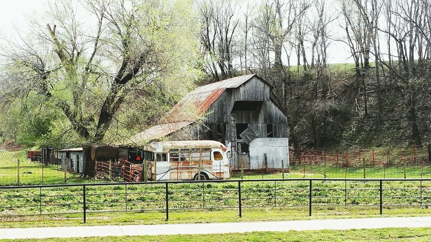 Barn Architecture Built Structure Building Exterior Outdoors Nature No People Tree Grass Hillside Spring Springtime Tontitown, Arkansas