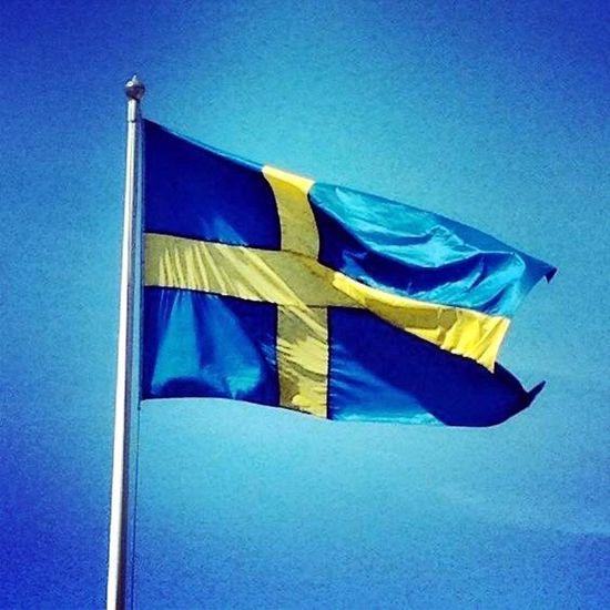 Swedish Nationalday Sweden Swedish Flag June 6th Summer Flag