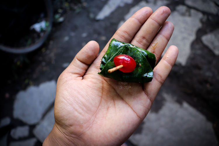 Cropped Image Of Person Holding Paan