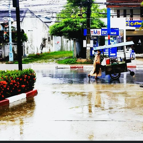 Took this in Thailand Phuket of a local who sells fruits. She was headed to work. Wet road as it was the beginning of Moonsoon Summer Phuket,Thailand Holiday