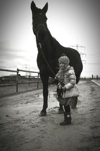 Frühling im stall. Windig und matschig aber schön und unbezahlbar Horse Outdoors Nature Beauty In Nature Sky One Animal