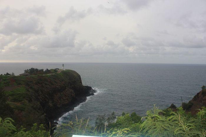 Kilauea Lighthouse, Kauai EyeEm Best Shots EyeEm Nature Lover EyeEmNewHere Sea Water Cloud - Sky Sky Beauty In Nature Scenics - Nature Plant Horizon Over Water Nature Beach Horizon Tree Tranquil Scene Tranquility Land Non-urban Scene Day No People Idyllic