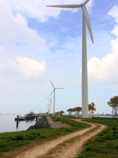 Wind Turbine Wind Power Cloud - Sky Sky Transportation Rotterdam Haven Waterfront Rotterdam Harbor Alternative Energy Fuel And Power Generation Day Renewable Energy Windmill Outdoors Field Industrial Windmill No People Grass Landscape Nature Technology Traditional Windmill Tree